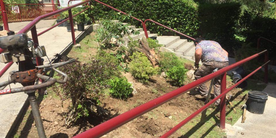jardines-zaragoza-trabajos-clientes-15