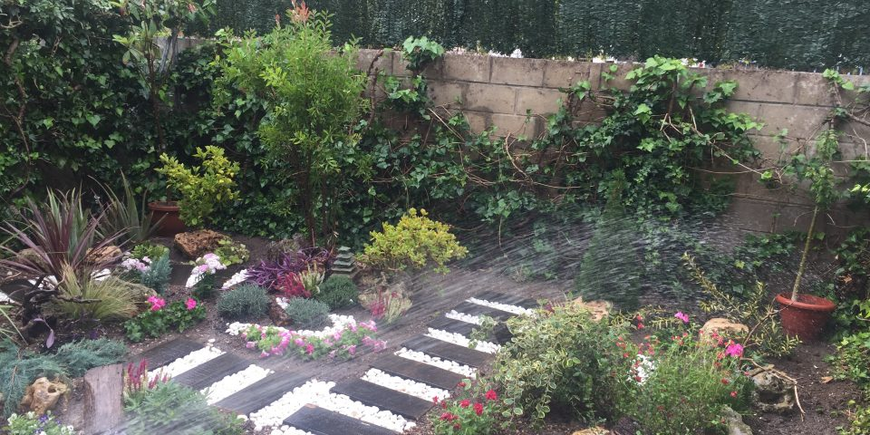jardines-zaragoza-jardin-zen-diseño-ornamentacion-plantas-3