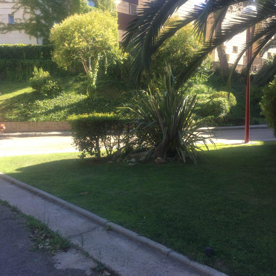 jardines-zaragoza-manteminiento-comunidades-4